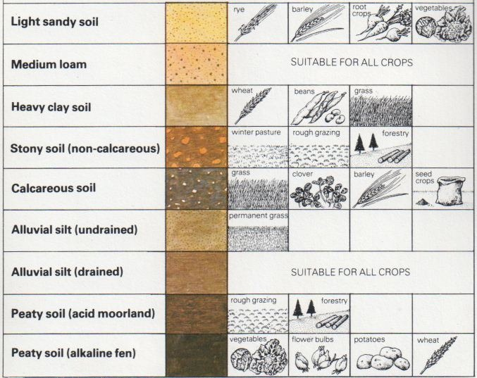 Soil types and agriculture the self sufficiency diy info for Different types of soil and their characteristics